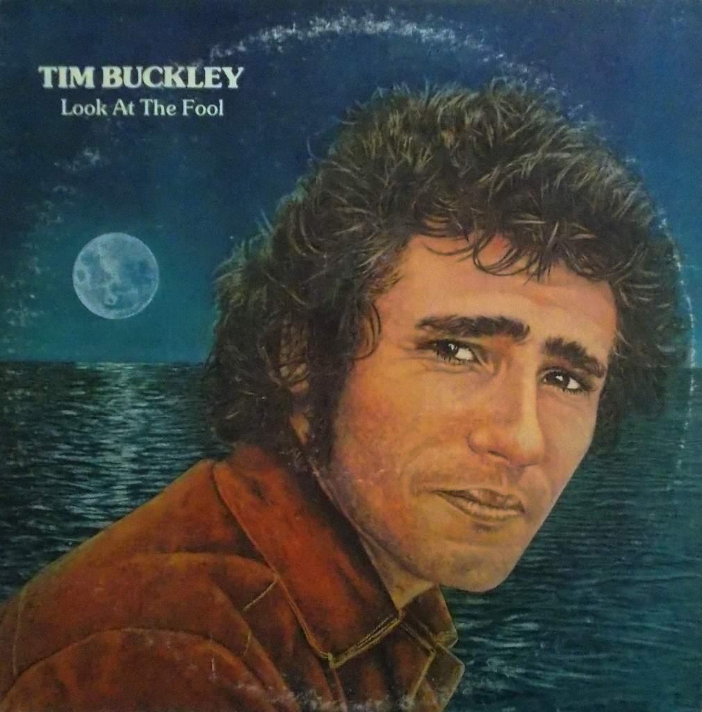 Tim buckley look at the fool discreet 1974 jeff white funk tim buckley look at the fool m4hsunfo